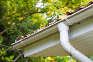 full gutters can lead to further problems. call us to help!